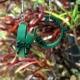 green hoop earrings, open hoops, half hoops, paper hoops, paper earrings