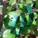 quilling four leaf clover, shamrock earrings, green celtic earrings, paper quill